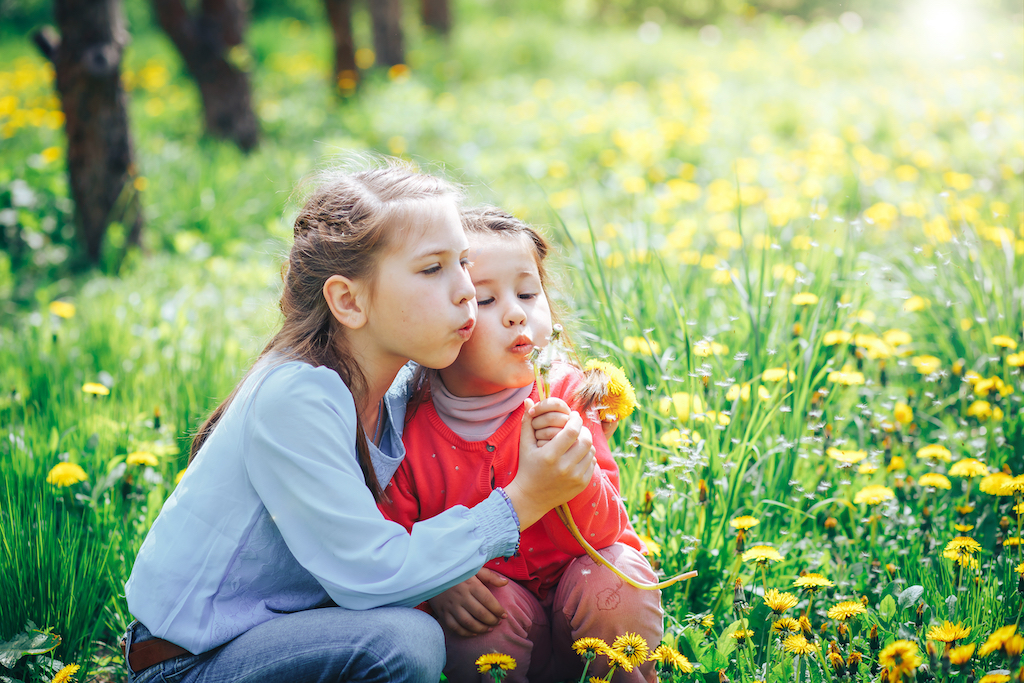 Two girls sat amongst flowers blowing dandelions
